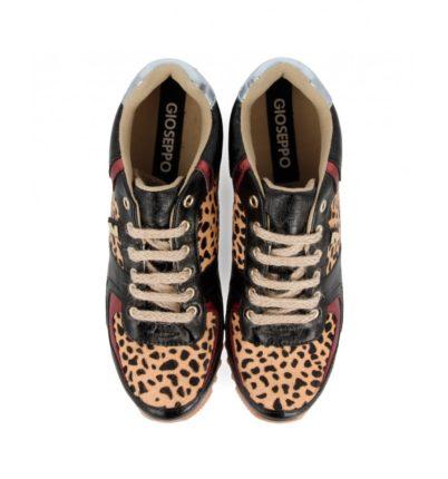 """""""Sneakers Gioseppo Woman ¡Justo lo que Querías!"""""""